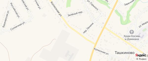 Колхозная улица на карте села Ташкиново с номерами домов