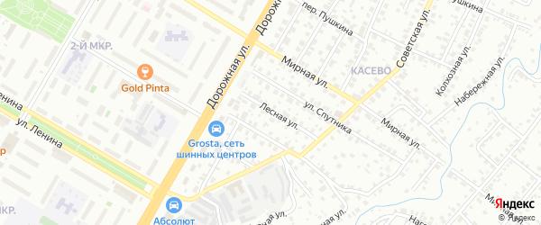 Лесная улица на карте СНТ Буя с номерами домов
