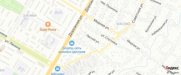 Лесной переулок на карте СНТ Буя с номерами домов