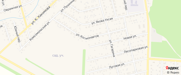 Улица Космонавтов на карте села Бижбуляка с номерами домов