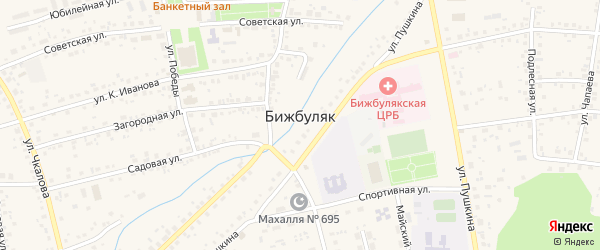 Интернациональный переулок на карте села Бижбуляка с номерами домов
