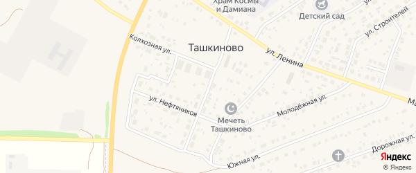 Центральная улица на карте села Ташкиново с номерами домов