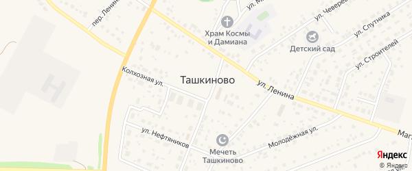 Набережный переулок на карте села Ташкиново с номерами домов