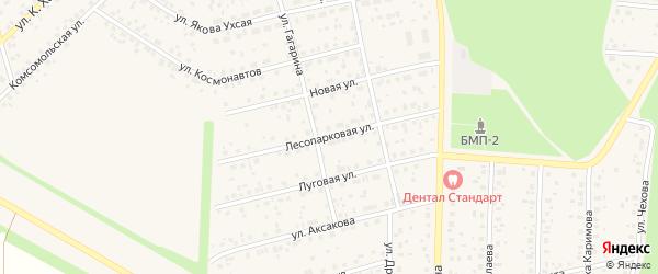 Лесопарковая улица на карте села Бижбуляка с номерами домов