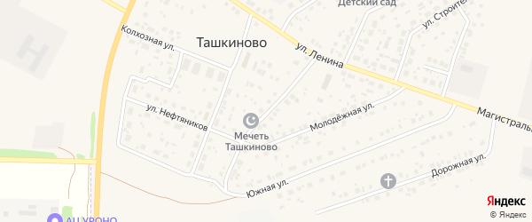 Южный переулок на карте села Ташкиново с номерами домов