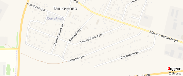 Молодежная улица на карте села Ташкиново с номерами домов