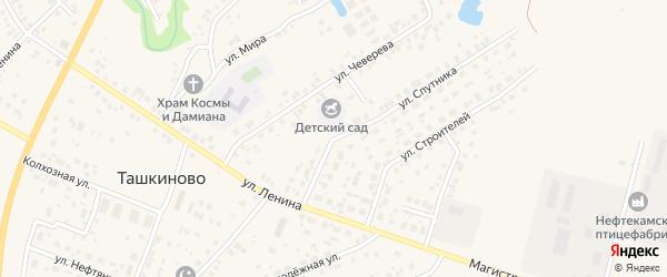 Молодежный переулок на карте села Ташкиново с номерами домов