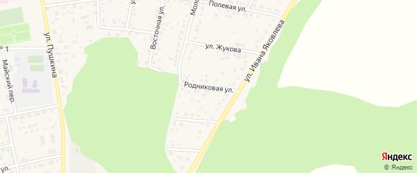 Родниковая улица на карте села Бижбуляка с номерами домов
