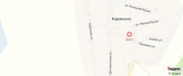 Табачная улица на карте деревни Карякино с номерами домов