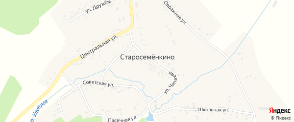 Улица Дружбы на карте села Старосеменкино с номерами домов