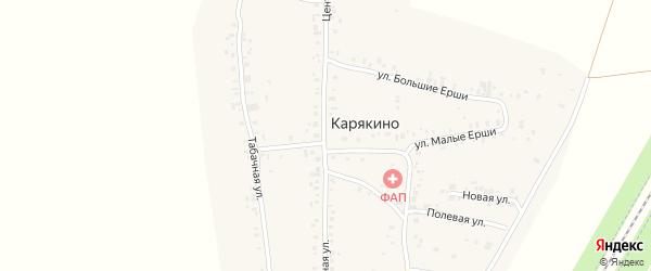 Центральная улица на карте деревни Карякино с номерами домов