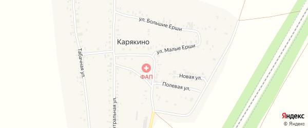 Улица Малые Ерши на карте деревни Карякино с номерами домов
