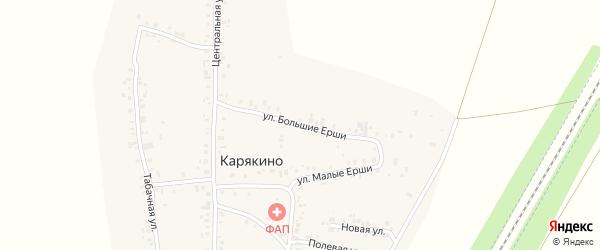 Улица Большие Ерши на карте деревни Карякино с номерами домов