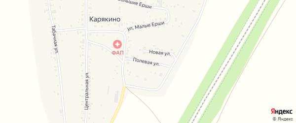 Полевая улица на карте деревни Карякино с номерами домов