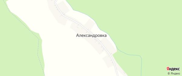 Центральная улица на карте деревни Александровки с номерами домов