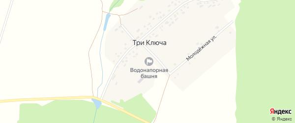 Молодежная улица на карте деревни Три Ключа с номерами домов