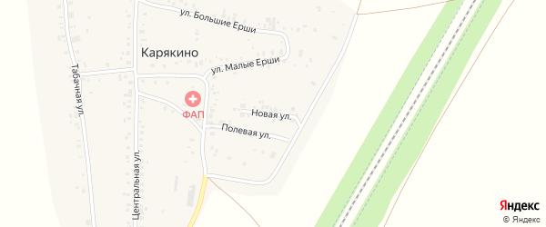 Новая улица на карте деревни Карякино с номерами домов