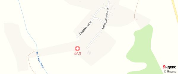 Центральная улица на карте деревни Нижней Курмазы с номерами домов