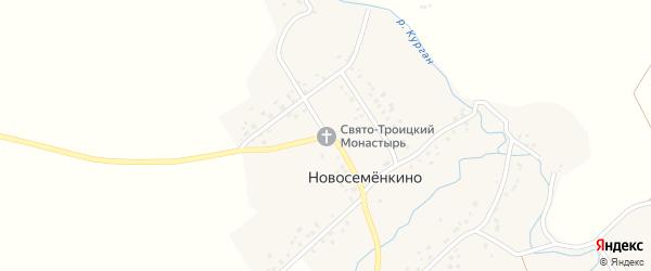 Улица Пушкина на карте села Новосеменкино с номерами домов