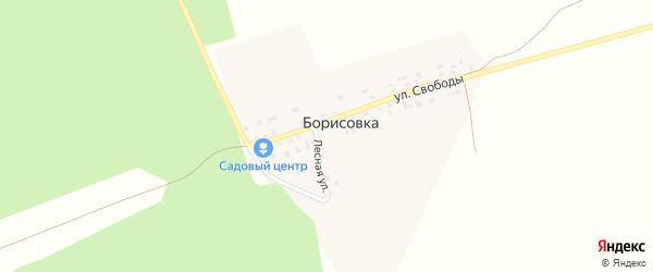 Лесная улица на карте деревни Борисовки с номерами домов