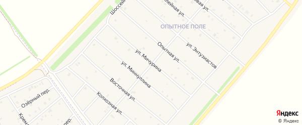 Улица Мичурина на карте деревни Верхнечерекулево с номерами домов