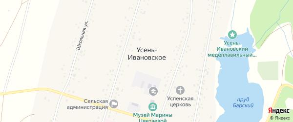 Заречная улица на карте Усени-Ивановского села с номерами домов