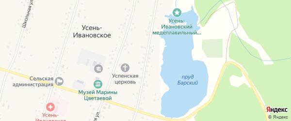 Улица М.Цветаевой на карте Усени-Ивановского села с номерами домов