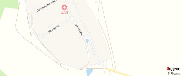 Лесная улица на карте села Новоактау с номерами домов