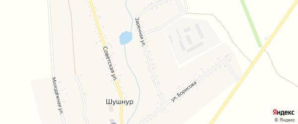 Заречная улица на карте села Шушнура с номерами домов