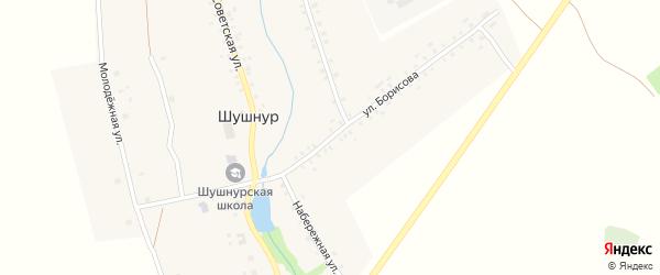 Улица Борисова на карте села Шушнура с номерами домов