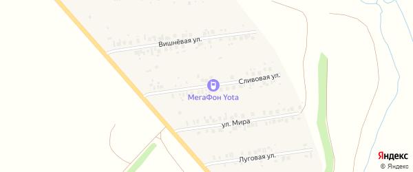Сливовая улица на карте деревни Кутлинки с номерами домов