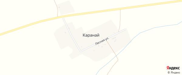 Лесная улица на карте деревни Караная с номерами домов