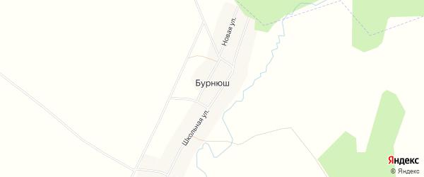 Карта деревни Бурнюша в Башкортостане с улицами и номерами домов