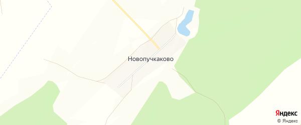 Карта деревни Новопучкаково в Башкортостане с улицами и номерами домов