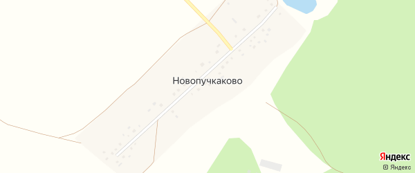 Улица Мира на карте деревни Новопучкаково с номерами домов