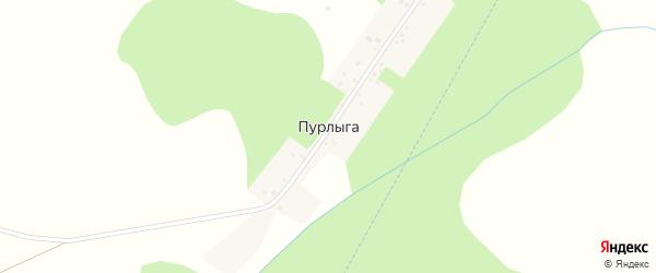 Центральная улица на карте деревни Пурлыги с номерами домов