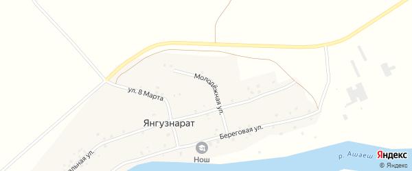 Молодежная улица на карте деревни Янгузнарата с номерами домов