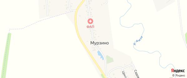 Интернациональная улица на карте деревни Мурзино с номерами домов