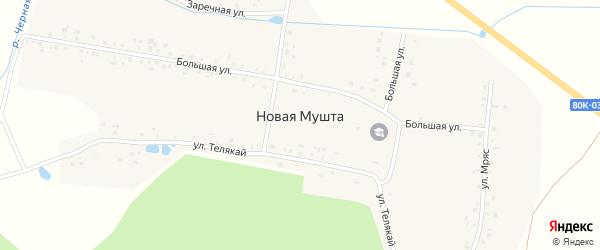 Заречная улица на карте деревни Новой Мушты с номерами домов