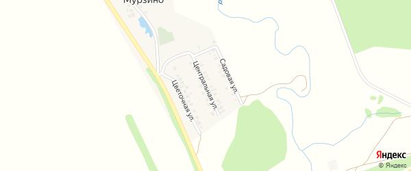 Центральная улица на карте деревни Мурзино с номерами домов