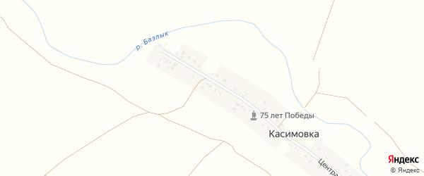 Центральная улица на карте деревни Касимовки с номерами домов