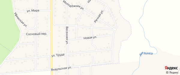 Новая улица на карте села Амзи с номерами домов