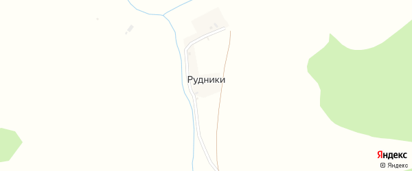 Центральная улица на карте деревни Рудники с номерами домов