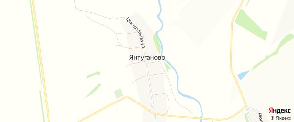 Карта деревни Янтуганово в Башкортостане с улицами и номерами домов