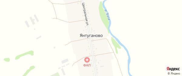 Центральная улица на карте деревни Янтуганово с номерами домов
