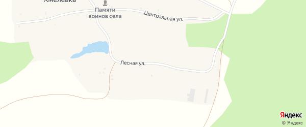 Лесная улица на карте села Хмелевки с номерами домов