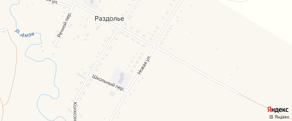 Новая улица на карте деревни Раздолья с номерами домов