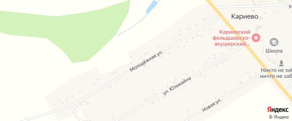 Молодежная улица на карте села Кариево с номерами домов