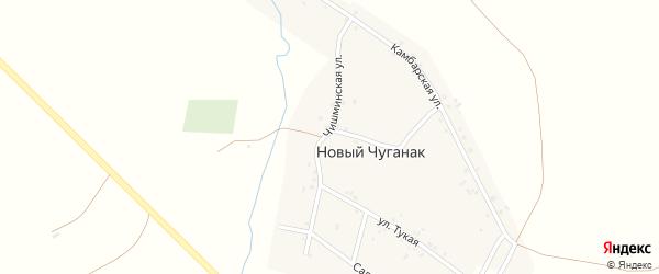 Чишминская улица на карте деревни Нового Чуганака с номерами домов