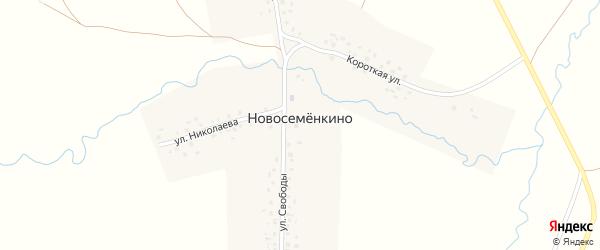 Короткая улица на карте села Новосеменкино с номерами домов